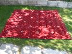 Голям страхотен килим 120772_SAM_1503.JPG