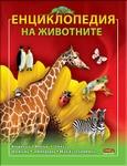 chiburashka_10_.jpg