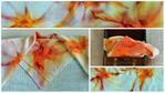 Уникални ръчно рисувани шалове коприна lennyh_FotorCreatedmo.jpg