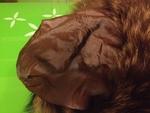 Уникална шапка - естествен косъм lennyh_IMG_37111.JPG