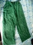 !Зелен панталон dessi101_DSCI085.JPG